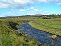 The River Ayr - geograph.org.uk - 569695.jpg