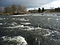 The River Forth - geograph.org.uk - 330927.jpg