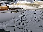 The Spirit of Fife Yachting (2597937837).jpg