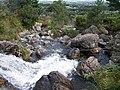 The Tullybranigan River - geograph.org.uk - 1471932.jpg