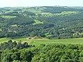 The Valley of the River Derwent, near Holloway, Derbyshire. - geograph.org.uk - 110451.jpg
