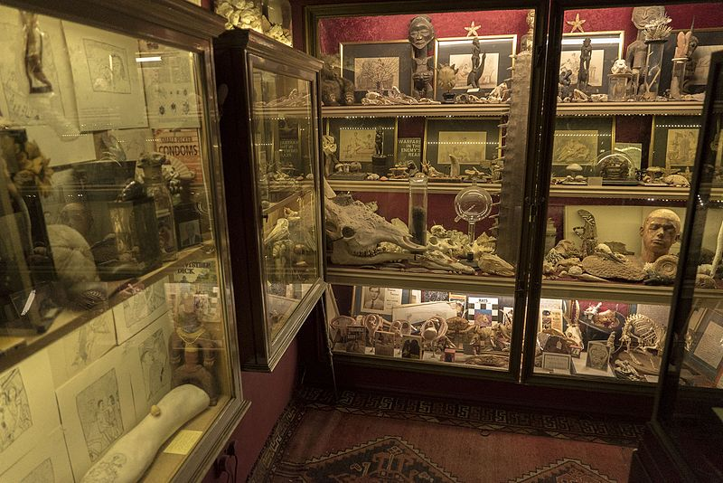 800px-The_Viktor_Wynd_Museum_cabinet_of_curiosities_28.jpg