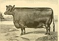 The breeds of live stock, and the principles of heredity (1887) (14778183241).jpg