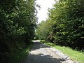 The track leading to the Shepherd's Lodge Outdoor Activities Centre - geograph.org.uk - 1459434.jpg