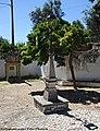 Tomar - Portugal (15057761341).jpg
