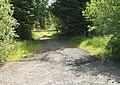 Track Entrance at Gartcarron - geograph.org.uk - 453465.jpg