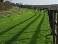 Track and fence near Warren Row - geograph.org.uk - 289155.jpg
