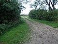 Track to Bonthorpe - geograph.org.uk - 231766.jpg