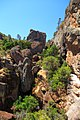 Trails in Pinnacles National Park, Califorina (7975477592).jpg