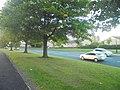 Trees along Jennyfield Drive, Harrogate (12th September 2018).jpg