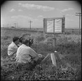 Tule Lake Relocation Center, Newell, California. (L to R) Frank Vail, newsreel cameraman for Pathe, . . . - NARA - 537142.tif