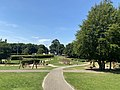 Tullamore Town Park, 2021-07-21, 01.jpg