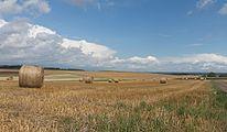 Tussen Kaichen en Heldenbergen, hooibalen in panorama foto6 2016-08-10 14.48.jpg