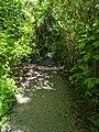 Twin Ponds Park.jpg