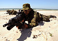 US Navy 120611-N-ON468-374 Lithuanian special forces members lie in formation on a beach during a Baltic Operations.jpg