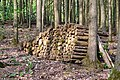 Um Heedesfeld-114.jpg