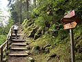 Un sentiero - panoramio.jpg