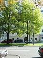Untere Donaulände 22.JPG
