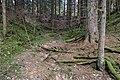 Unterwald-Ponor 07.jpg