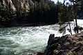 Upper Falls Yellowstone River 18.JPG