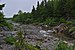 Upper Salmon River3.jpg