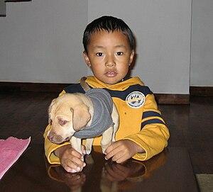 Tulku Urgyen Rinpoche - Yangsi Urgyen Rinpoche