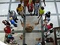 Výukové programy pro školy v Přírodovědném muzeu Semenec.jpg