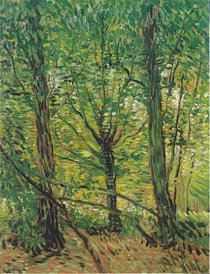 Trees and Undergrowth (Van Gogh series) - Trees and Undergrowth, 1887, Van Gogh Museum, Amsterdam (F307)