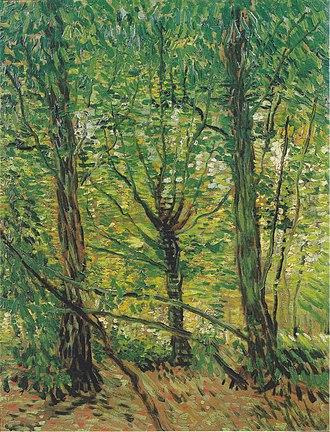 Trees and Undergrowth (Van Gogh series) - Trees and Undergrowth, 1887, Van Gogh Museum, Amsterdam (F307)