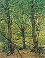 Van Gogh - Bäume und Unterholz.jpeg