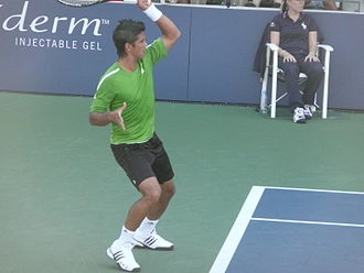 Fernando Verdasco - Verdasco at the US Open