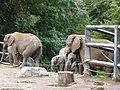 Verleihung der EGHN-Plakette an den Zoo Wuppertal 006.jpg