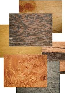 Holz (von germanisch *holta(z)