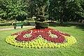 Vesoul Jardin anglais - fleurs.JPG
