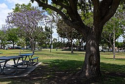 Veterans Park Bell Gardens CA 1