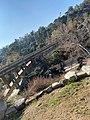 View of Holly Street Bridge.jpg