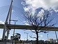 View of Tempozan Bridge in front of Sakurajima Station.jpg