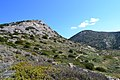 View of the Mountains Northern Syros Natura.jpg