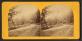View on the Wissahickon, from Robert N. Dennis collection of stereoscopic views 2.png