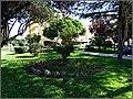 Vila Real de Sto. Antonio (Portugal) (39950698900).jpg
