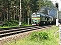 Vilciens pie Dārziņu stacijas - ogre11 - Panoramio.jpg