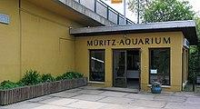 Aquarium Waren