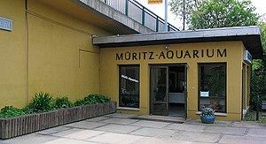 Müritzeum - Müritz-Aquarium – mit dem Müritz-Museum Ursprung des Müritzeums