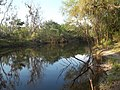 Wauchula FL Heard Bridge Rd Peace River north02.jpg