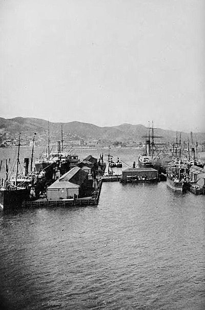 Wellington waterfront-Picturesque New Zealand, 1913.jpg