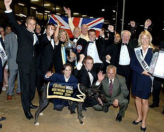 Greyhound racing in the United Kingdom - Image: Westmead Hawk