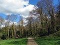 Weston Hills LNR (20594972869).jpg