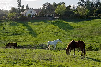 Los Altos Hills, California - Westwind Community Barn