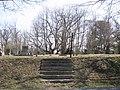 What Cemetery? (3384893428).jpg