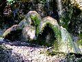 WikiProjekt Landstreicher Wasserfall Hinang 55.jpg